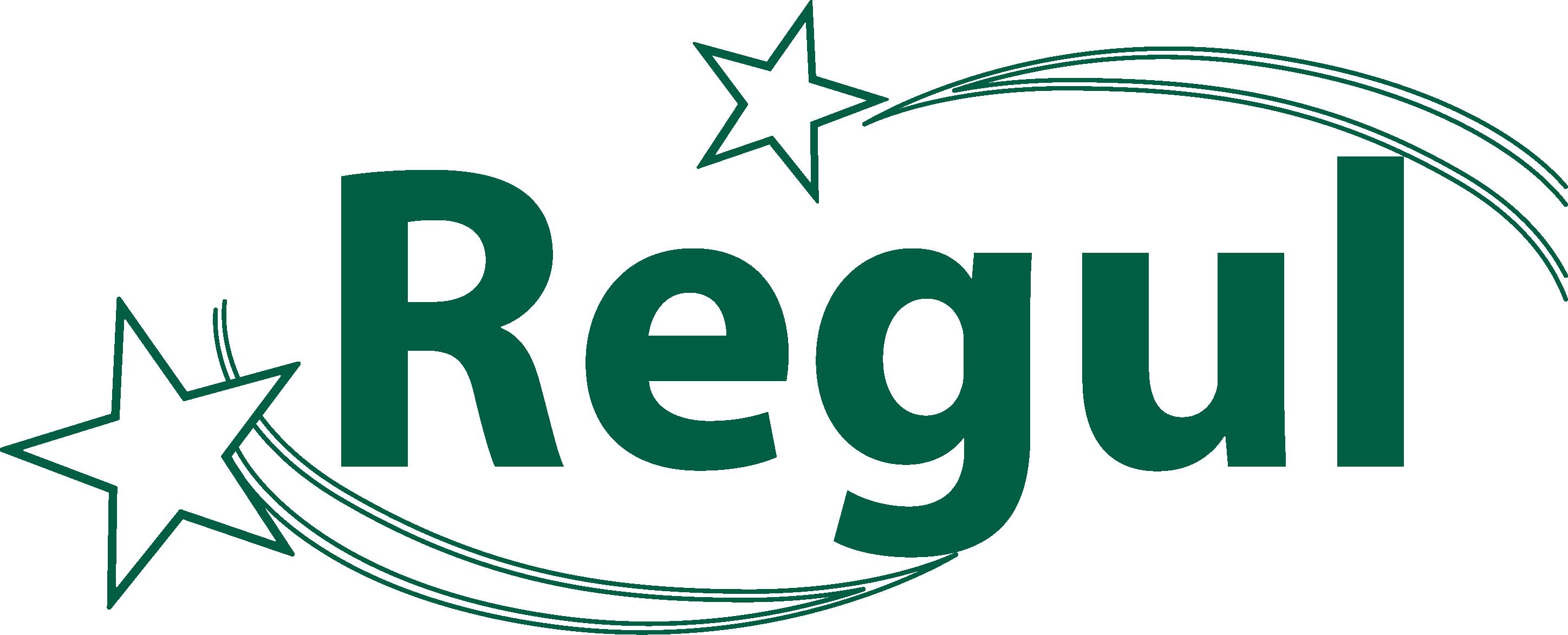 лого две звезды.png